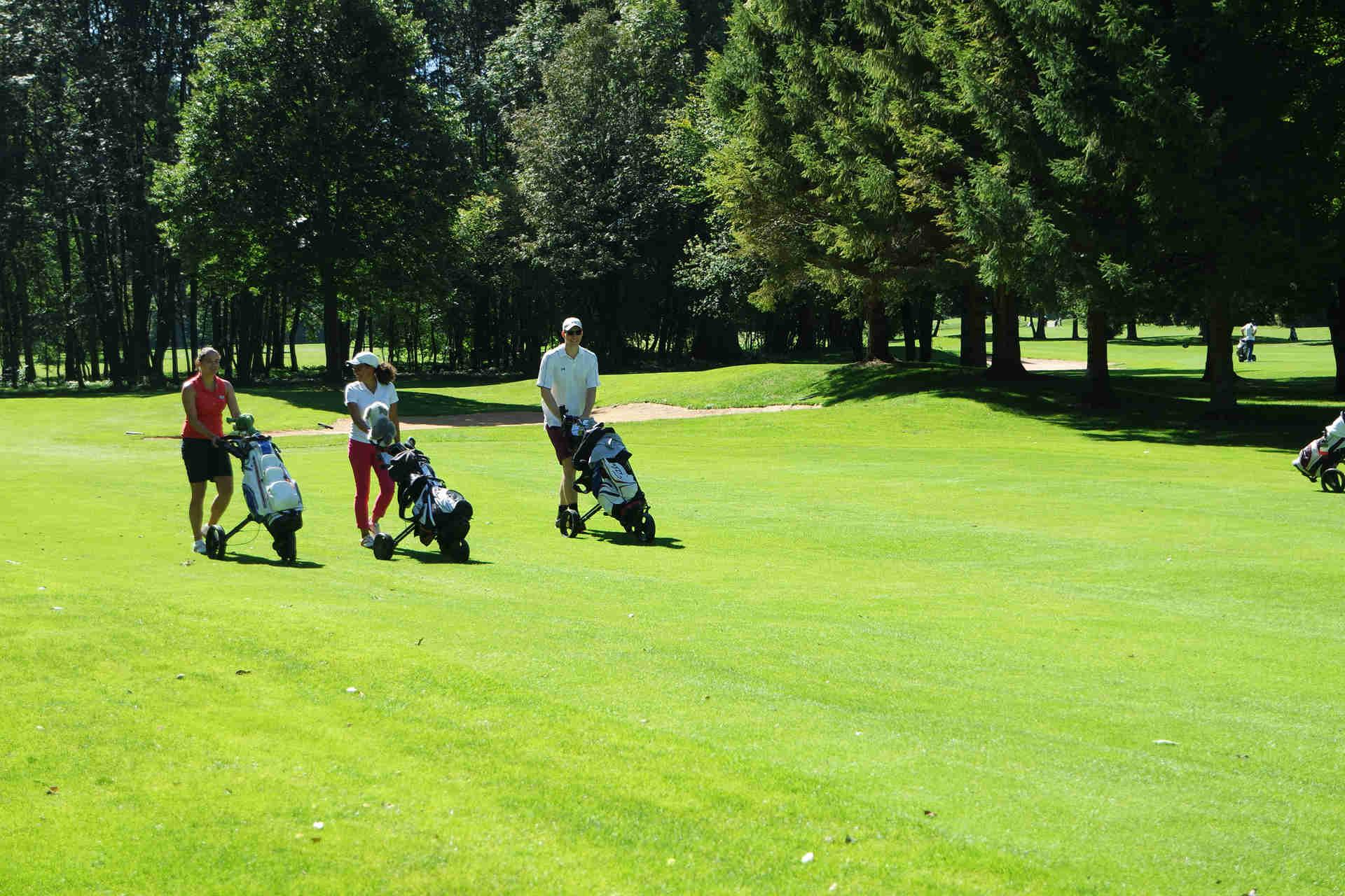 Viel Grün und gepflegte Fairway. (Foto: Golfclub Hotel Margarethenhof)