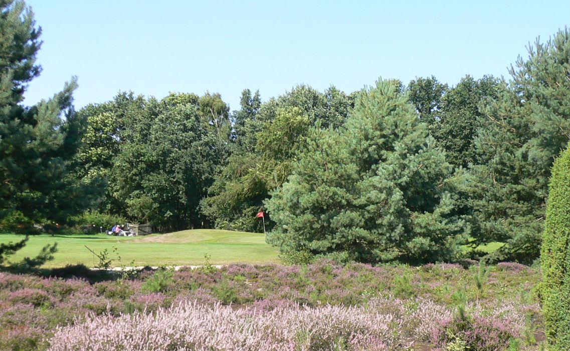 Viel Grün um und auf dem Platz. (Foto: Golfpark Heidewald)