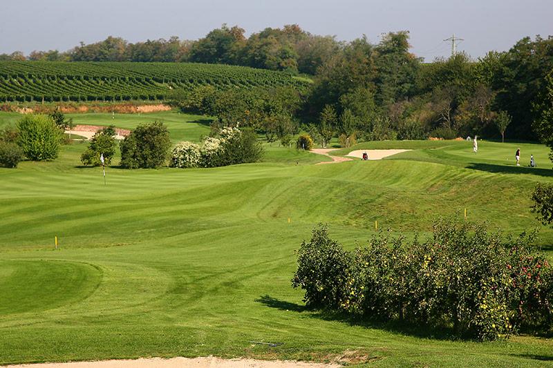 li: grün der 13 re: grün der 6 hi: grün der 16 (Foto: Golfgarten Deutsche Weinstraße)