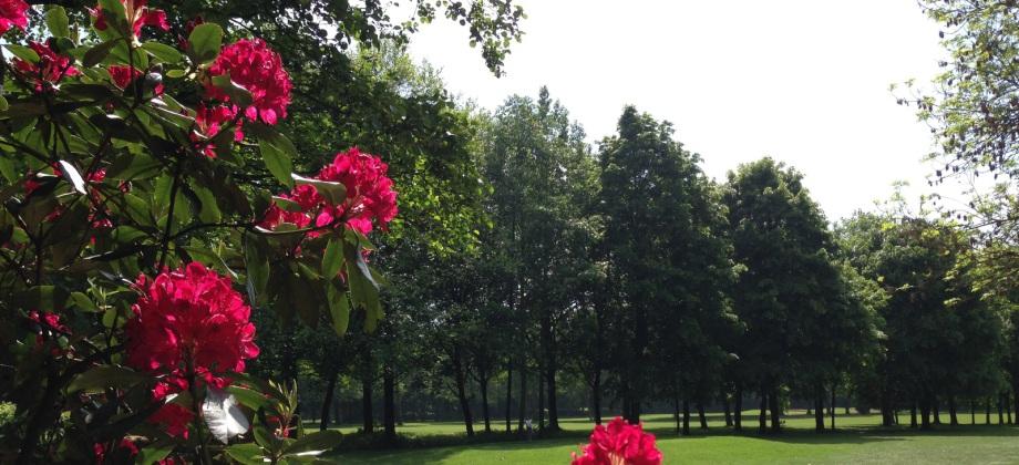Impressionen des GC Ravensberger Land. (Foto: GC Ravensberger Land)