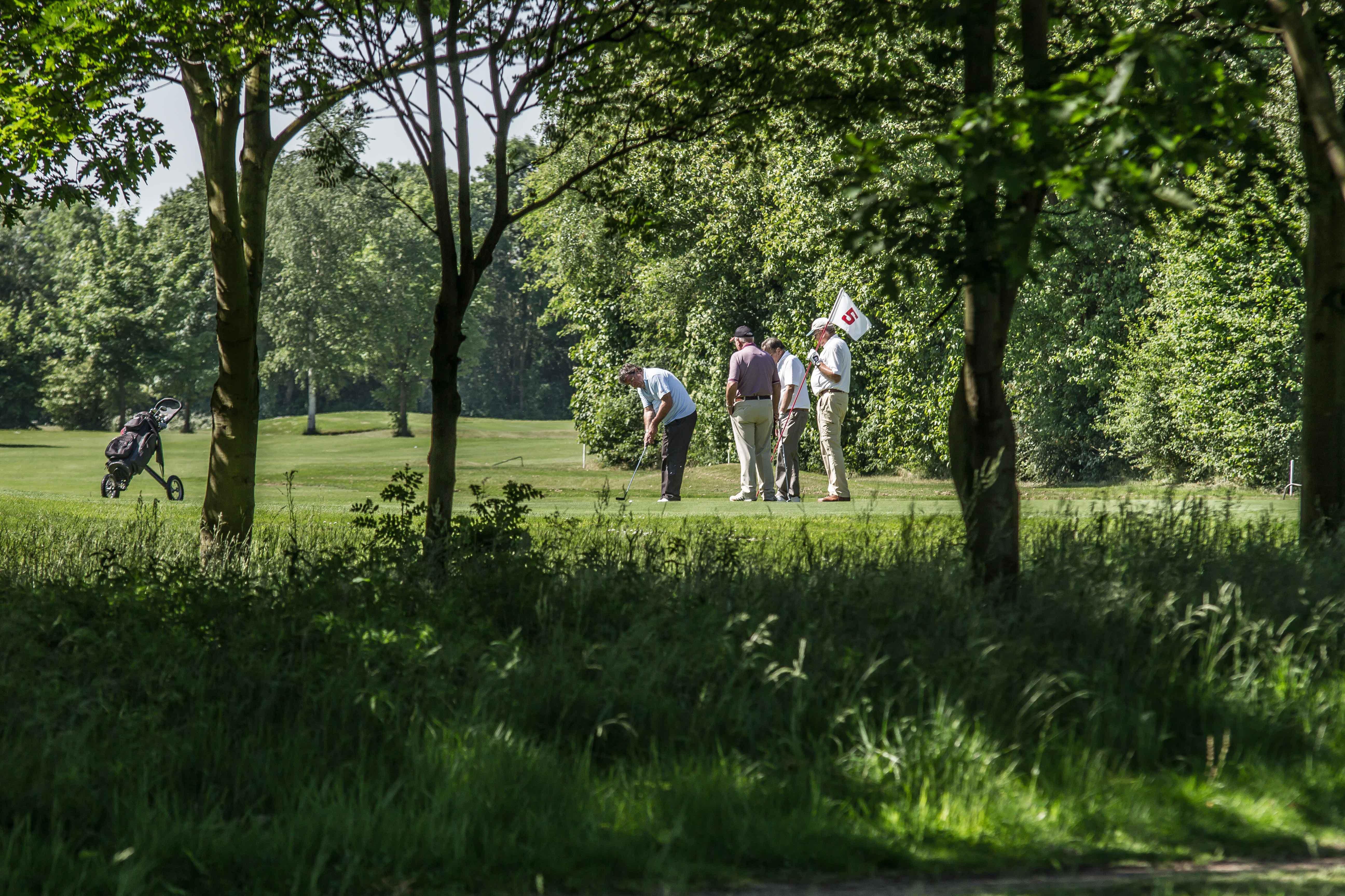 Impressionen des Golfclubs Marienfeld. (Quelle: GC Marienfeld).