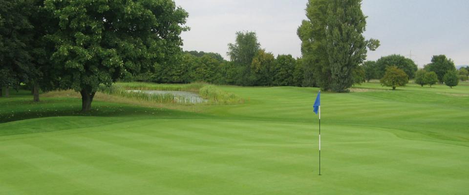 Impressionen vom Golfclub Mannheim Viernheim. (Quelle: GC Mannheim Viernheim)