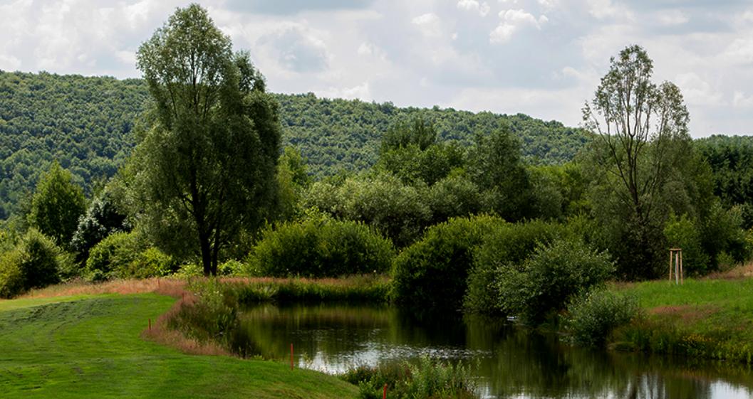 Impressionen vom Golfpark Bostalsee. (Quelle: Golfpark Bostalsee)