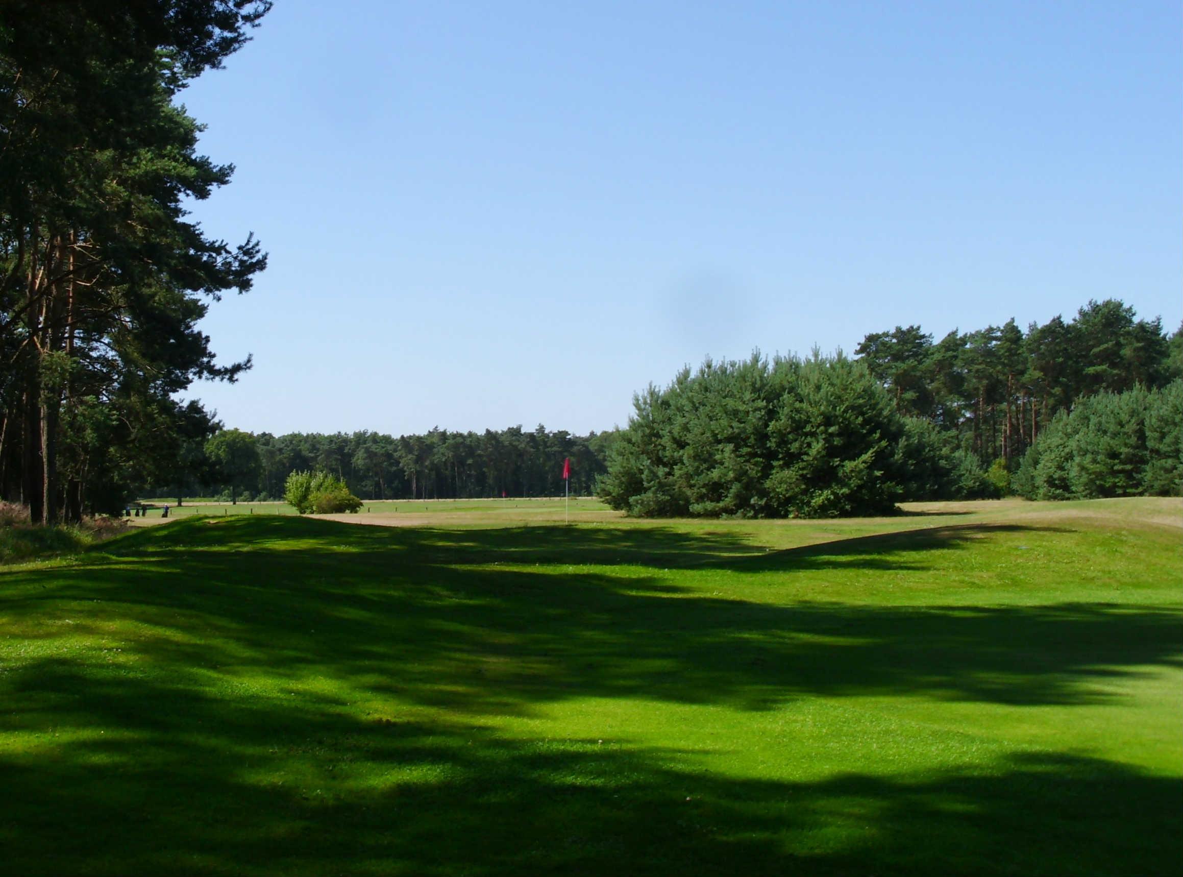 Die Fairways ziehen sich durch einen dichten Wald. (Foto: Golfclub Aukrug)