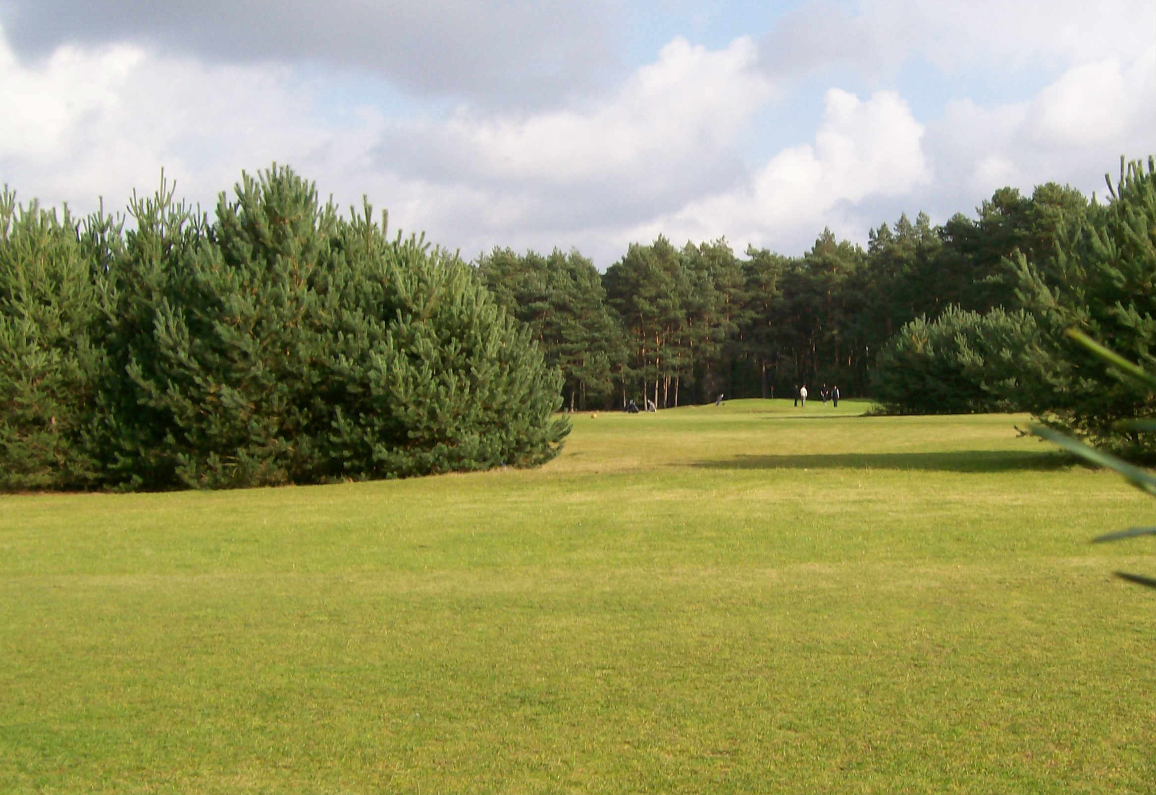 Schöne Grünanlagen mit Teichen und Büschen gibt es immer wieder auf der Anlage.(Foto: Golfclub Aukrug)