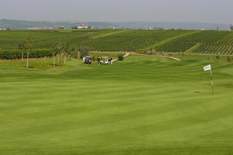 Impressionen des Golfgarten Deutsche Weinstraße. (Foto: Golfgarten Deutsche Weinstraße)