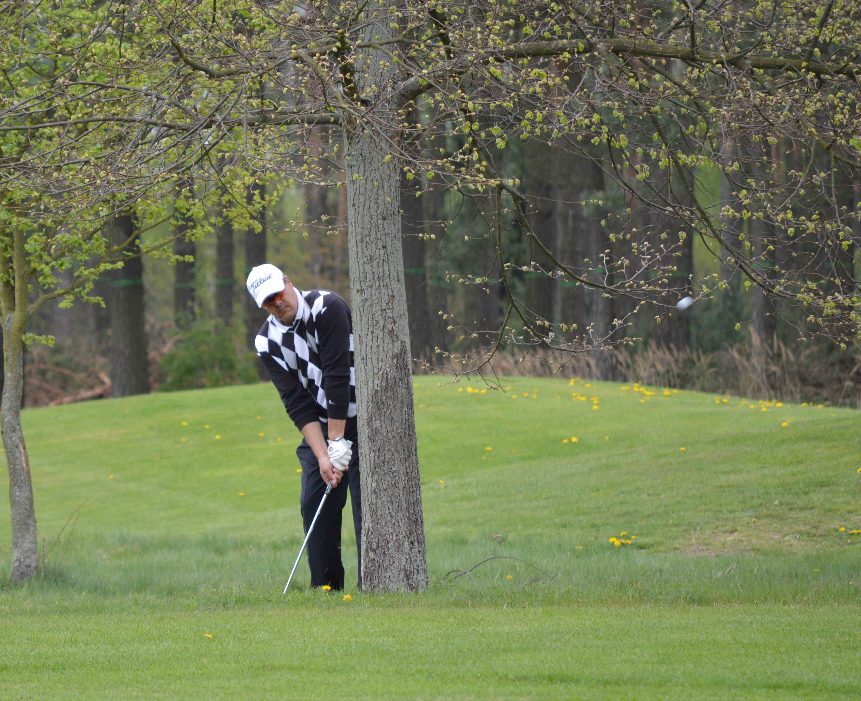 Foto: Lausitzer Golfclub