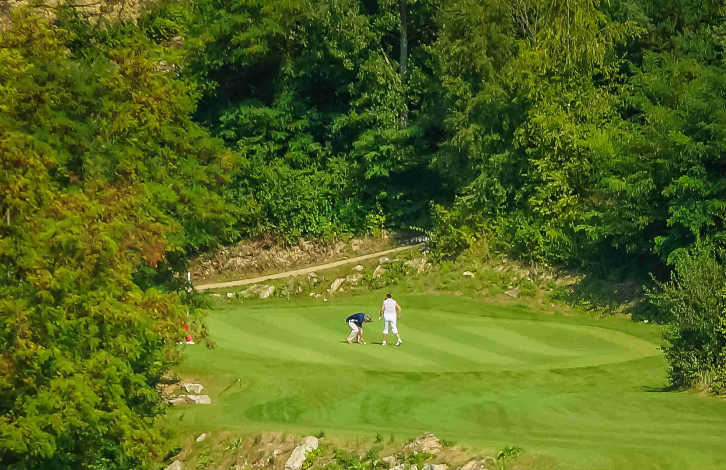 Die Bahnen und Grüns sind oft von Bäumen und Büschen geschützt. (Foto: Mainzer Golfclub)