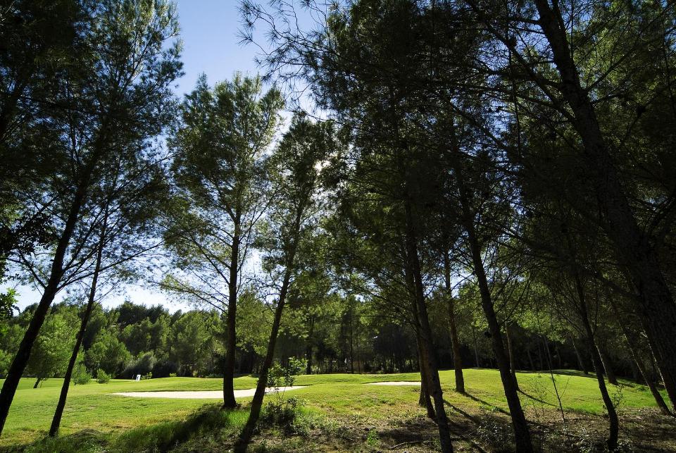 Der Son Quint ist der neuste Golfplatz der Arabella Golf Gruppe. (Foto: Arabella Son Quint)