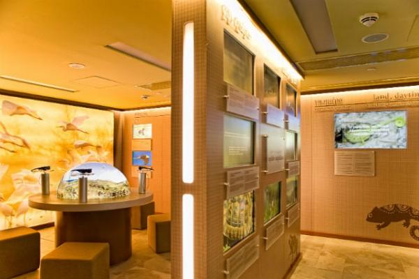 <h2>Navarino Nature Hall</h2>Das interaktive Besucherzentrum informiert Gäste und Schüler lokaler Schulen über den Naturraum der Region (Foto: Costa Navarino).
