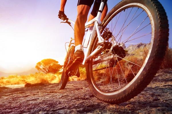 Die Landschaft erkunden mit top-modernen Radon-Bikes.