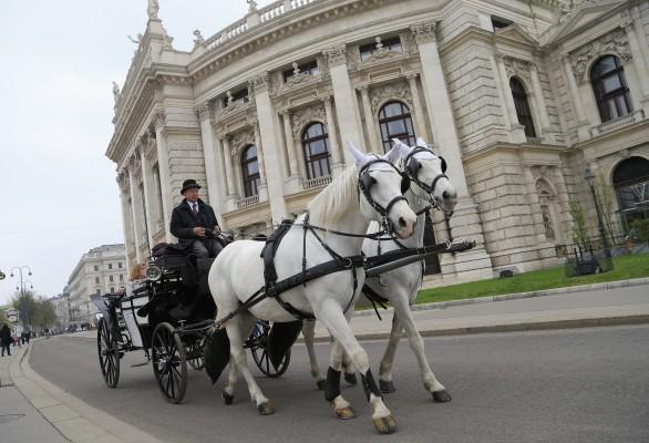 <h2>Fiakertour</h2>Die Fiakertour. Eine Fahrt mit einer der zweispannigen Pferdekutschen gehört zum Pflichtprogramm, einen bequemeren Weg durch die Stadt gibt es nicht. (Foto: Flickr @Daniel A. Eydt)