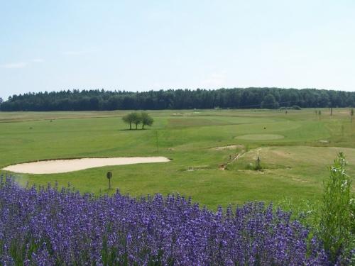 Golfplatz Altenstadt bei Golfpost