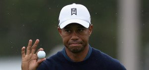 Woods mit Ball