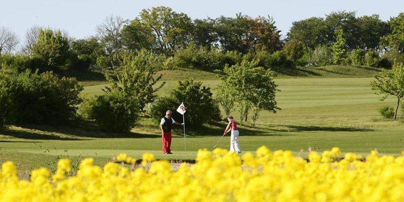 Ein Blick auf das Grün der Bahn 8 des Golf & Country Clubs Hohwachter Bucht