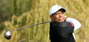 Tiger Woods bei der Northwestern Mutual World Challenge 2013.