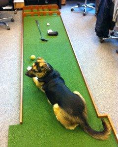 Nicht nur Golfer finden Gefallen an einem Putt-Board