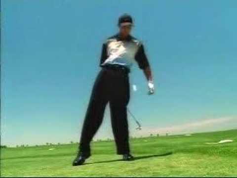 Nicht nur Tiger Woods kann aus der Luft abschlagen. In ihrem selbstgemachten Video begeistern zwei Brüder aus Österreich mit ihren Trick-shots.