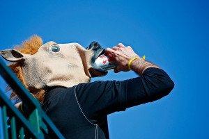 Ein großer Stimmungskiller wäre wahrscheinlich auch das Verbot von Alkohol trinkenden Pferden. (Foto: Getty)