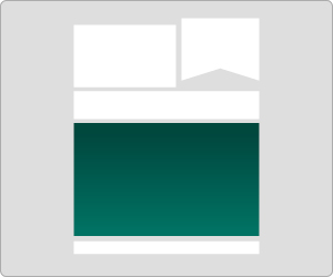 Bannerformate_newsletter3