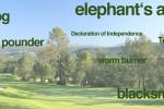 Golfbegriffe Golf Lexikon
