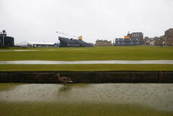 Lovely morning on the Old Course...if you're a duck. #TheOpen