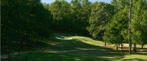 Ein Spalier aus Bäumen weist den Weg zum Grün auf dem Palmetto Golf Club Loch 7. (Foto: Getty)