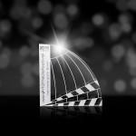 Den silbernen intermedia-globe erhielt TiCad für seinen Produktfilm. (Foto: TiCad)