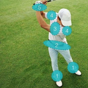 Mobile Gelenke im Golfschwung (Grafik: golfstun.de)