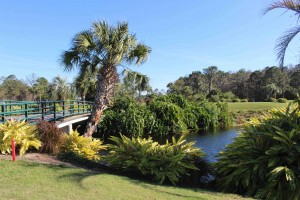 Die Walt Disney Golfplätze stechen in der Fülle an Plätzen in Orlando nochmal besonders heraus. (Foto: Golf Post)