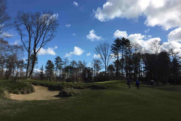 Doch nicht nur Linkscourse! Der GC Föhr überzeugt auch mit altem Baumbestand. (Foto: Golf Post)