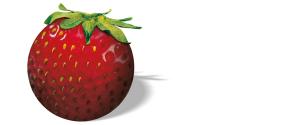 Strawberry Tour: Jetzt anmelden und mitspielen! (Foto: Strawberry Tour).