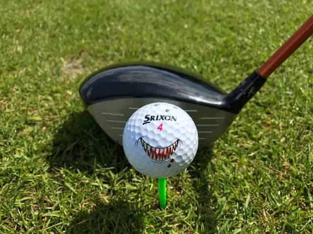 Golf Post Tester Oliver Christ ging mit Biss an die Sache heran und testete den Srixon Z565 Driver mit den dazu passenden Bällen. (Foto: Oliver Christ)