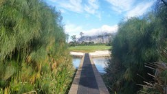 Loch 7 des Steenberg Golf Club. (Foto: Kai Wunner)