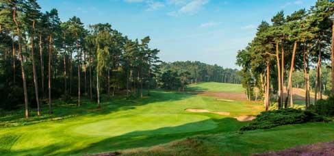 In traumhafter Atmosphäre liegt der Hamburger Golf Club, welcher ganzjährig in einem guten Zustand vorzufinden ist. (Foto: Hamburger GC)