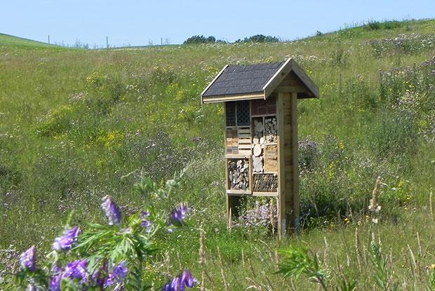 Ein Insektenhotel mit entsprechender Ausstattung ist Herberge für zahlreiche Arten. (Foto: Ostsee Golf Resort Wittenbeck)