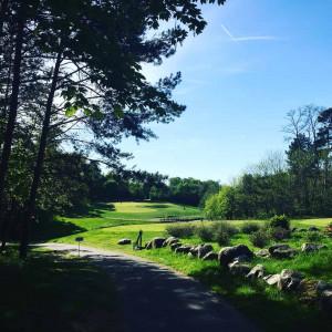 Der Palmer Course im A-ROSA Resort am Scharmützelsee bietet perfekte Parkland-Optik. (Foto: Golf Post)