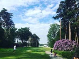 Der RInkven G&CC präsentierte sich zum ProAm des Belgian Knockouts in einem prächtigen Zustand. (Foto: Golf Post)