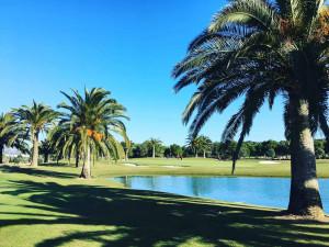 Der T-Golf & Country Club Poniente holt mit Siebenmeilenstiefeln auf. (Foto: Golf Post)