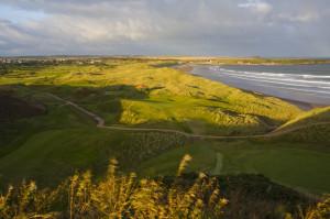 Im Cruden Bay Golf Club bilden der blühende Ginster und das Meer eine perfekte Symbiose. (Foto: David J Whyte)